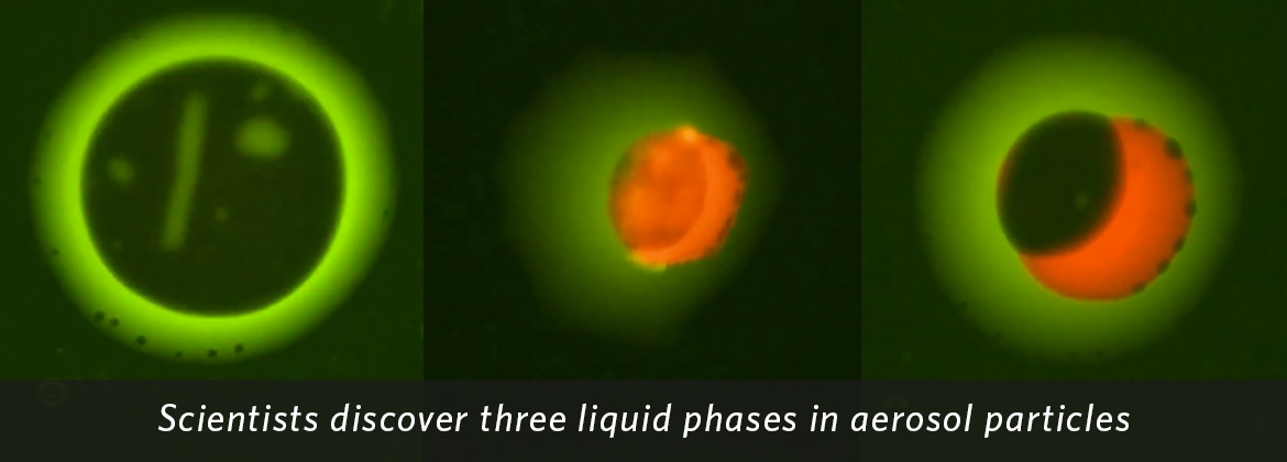 Particles showing 3 liquid phases. Credit: Yuanzhou Huang