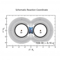 In the vibrational bond muonium would 'bounce' between the two bromine atoms